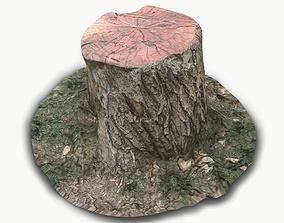 3D asset Stump01