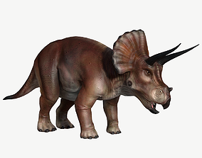 3D asset game-ready animals Triceratops