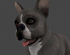 MBUL-008 Animated Dog 3D
