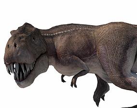3D model Realistic Tyranasaurus rex