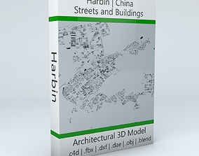 Harbin Streets and Buildings 3D model