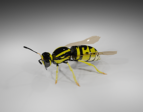 Wasp Model forest