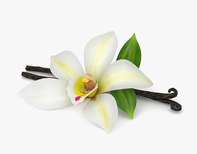 Vanilla Flower 3D