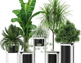 Plants collection 372 3D model