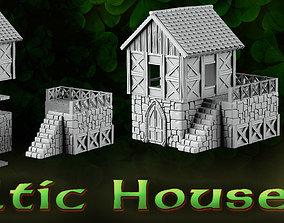 3D print model Celtic House