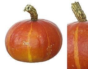 Small Hokkaido Pumpkin 3D asset