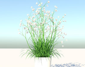 3D asset VR / AR ready Flower