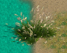 3D other Lakeside Plants - Reed 05