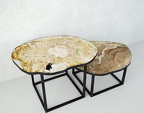 Petrified Wood Slice Coffee Tables 7 3D