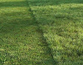 Sports lawn 3D