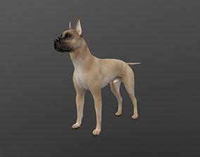 ANML-019 Dog 3D model