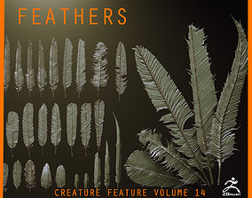 FEATHERS - 40 High poly sculpts and IMM Brush 3D model