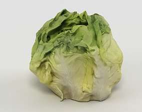 Salad 003 3D asset