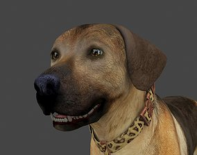 FLAB-013 Animated Dog 3D model