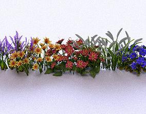 3D model Garden Plant