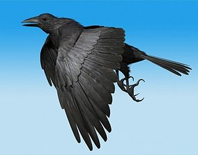 CROW - Fully Rigged For Max 3D model