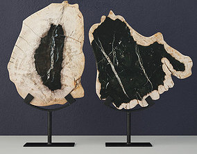 Petrified Wood Slices On Stand 3D model