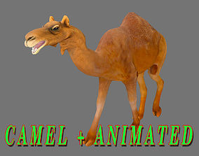 animated CAMEL 3D MODEL - ANIMATED