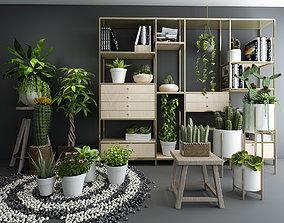 houseware Plants 3D model