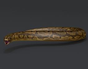 Titanoboa Python 3D model