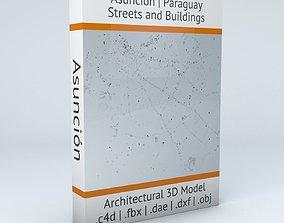 3D model Asuncion Streets and Buildings