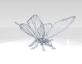3D Butterfly Wireframe