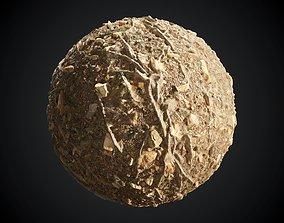 3D Forest Ground Seamless PBR Texture