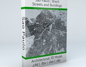 3D Sao Paulo Streets and Buildings