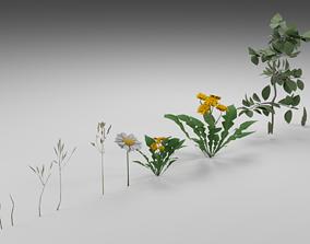 3D model Navuroki Plant Asset