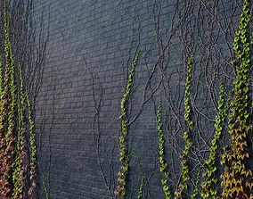ARCHICG PLANTS IvyWalls vol 1 07 3D