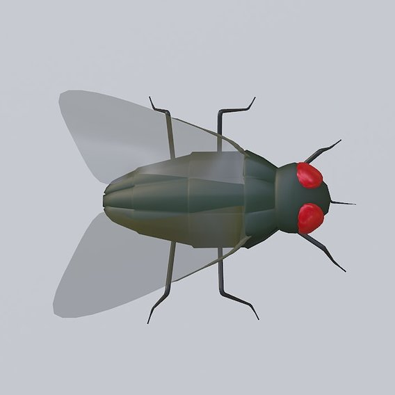 Mosquito - Fly Low poly