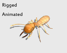 3D model low-poly rigged animated termite white ant
