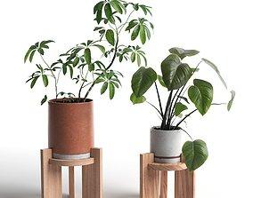 Pots with Plants 2 3D model