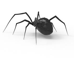 3D Spider animal