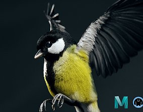 3D model Great tit