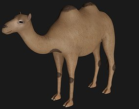 fully rigged low poly camel 2 3D asset