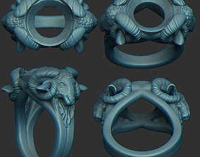 3D print model Ring for Ram