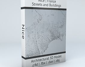 Nice Streets and Buildings 3D model