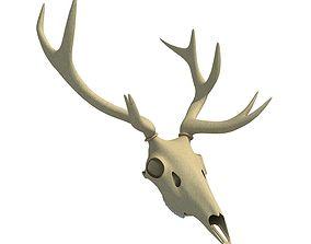 Deer Skull 3D