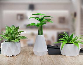 polygonal pots 3d printing