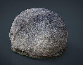 tree Rock 3D model game-ready