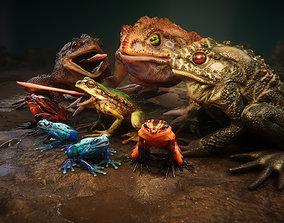 Frogs pack 3D model