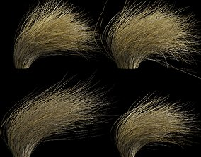 Wild Dry Grass Bent By The Wind 3D model