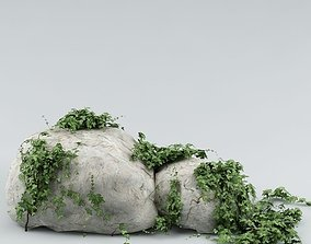 Ivy and stone 02 3D