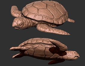 tortoise 3D asset realtime Turtle