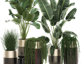 Houseplants in a luxury pot for the interior 706 3D