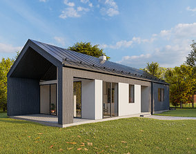 Summer house archicad22 sketchup lumion10 3D model
