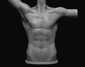 zbrush Male torso 3D printable model