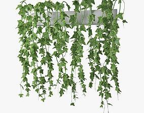 decor 3D model Ivy in pot 03