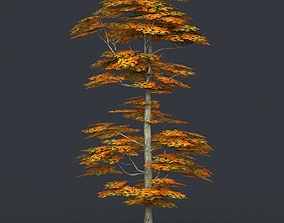 Low Poly Tree 16 3D asset